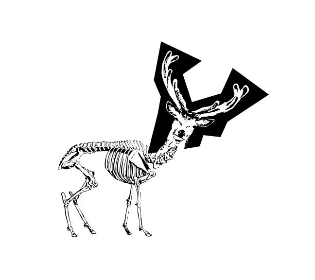 deer_vector